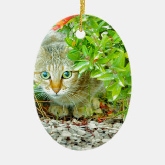 Hidden Domestic Cat with Alert Expression Ceramic Ornament