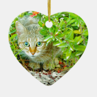 Hidden Domestic Cat with Alert Expression Ceramic Ornament