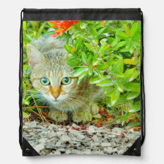 Hidden Domestic Cat with Alert Expression Drawstring Bag