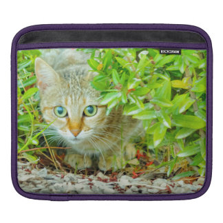 Hidden Domestic Cat with Alert Expression iPad Sleeve