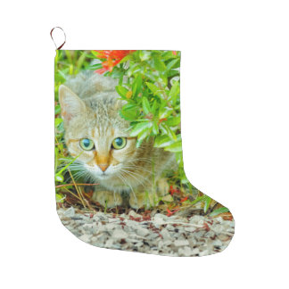 Hidden Domestic Cat with Alert Expression Large Christmas Stocking