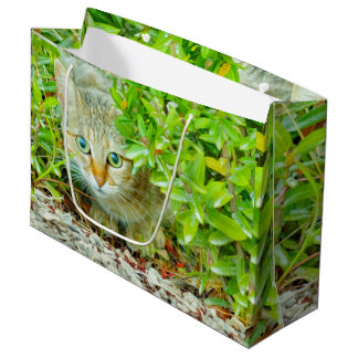 Hidden Domestic Cat with Alert Expression Large Gift Bag