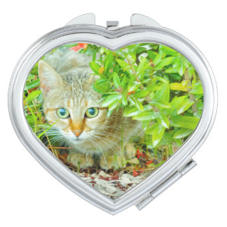 Hidden Domestic Cat with Alert Expression Makeup Mirror