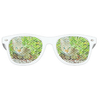 Hidden Domestic Cat with Alert Expression Retro Sunglasses