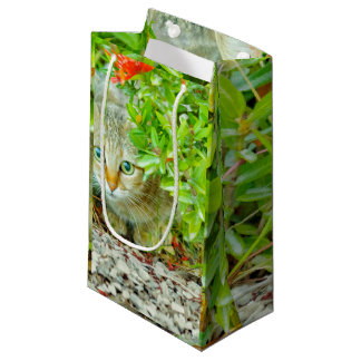 Hidden Domestic Cat with Alert Expression Small Gift Bag