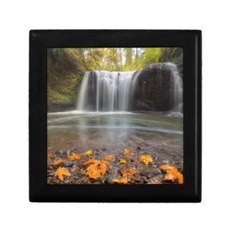 Hidden Falls in Clackamas Oregon fall season Gift Box