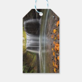 Hidden Falls in Clackamas Oregon fall season Gift Tags