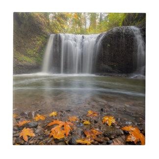 Hidden Falls in Clackamas Oregon fall season Tile