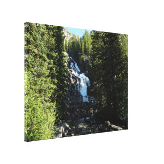 Hidden Falls in Grand Teton National Park Canvas Print