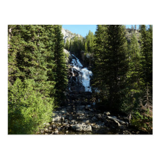 Hidden Falls in Grand Teton National Park Postcard