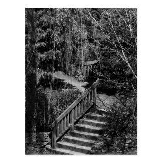 Hidden Garden Stairway Postcard