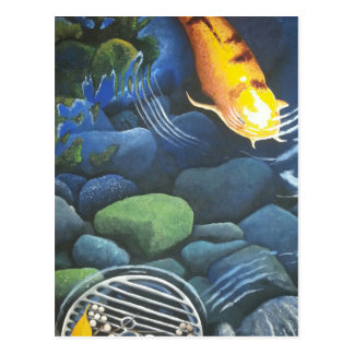 Hidden Magic Koi Pond Postcard