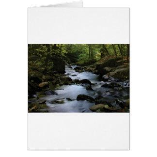 hidden stream in forest card