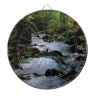 hidden stream in forest dartboard