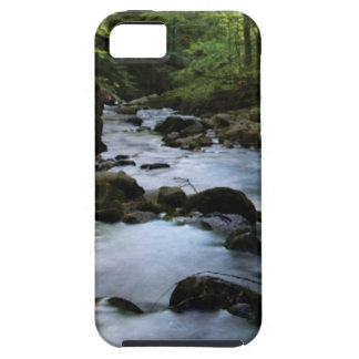hidden stream in forest iPhone 5 case