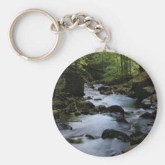 hidden stream in forest keychain