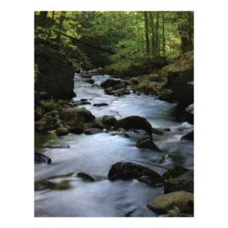 hidden stream in forest letterhead