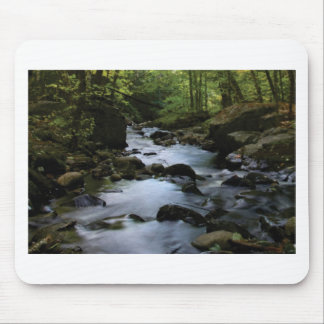 hidden stream in forest mouse pad