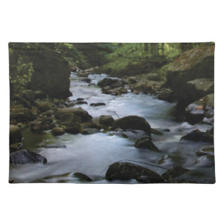 hidden stream in forest placemat