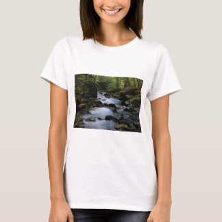 hidden stream in forest T-Shirt