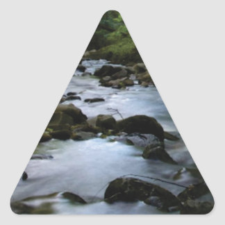 hidden stream in forest triangle sticker