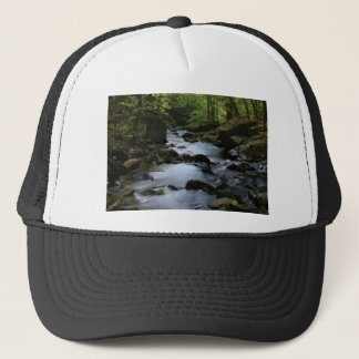 hidden stream in forest trucker hat
