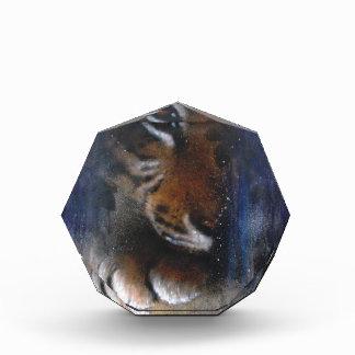 Hidden Tiger animal art