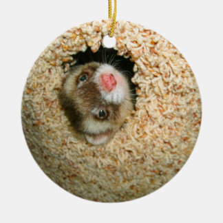 Hide-and-Seek Pauley Ornament
