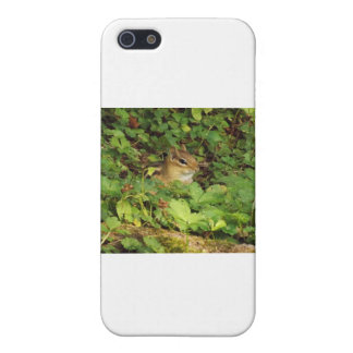 Hiding Place iPhone 5/5S Case