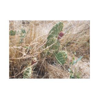 High Desert Cactus Canvas Print