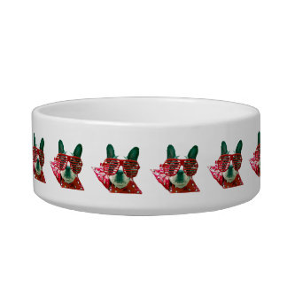 HIGH FLIER DOG DISH - COLORFUL GIFT