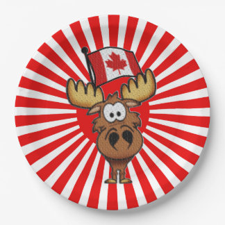 High Flyer Canada Day Party Paper Plates