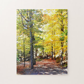 High Level Coloured Autumn Path Puzzle