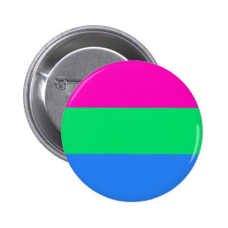 High Quality Polysexual Flag Button