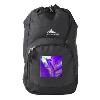 High Sierra Purple Iris