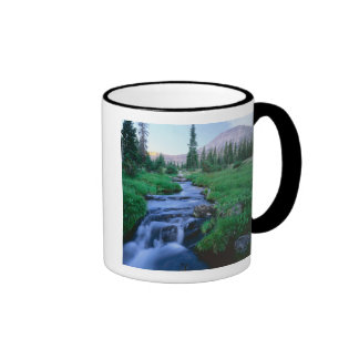 HIGH UINTAS WILDERNESS, UTAH. Stillwater Fork Mugs