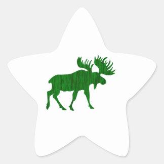 Higher Ground Star Sticker