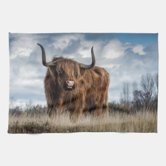 Highland Bull Kitchen Towels