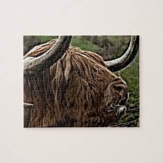 Highland Cattle, rural Scotland Jigsaw Puzzle
