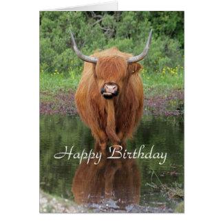 Highland cow birthday card