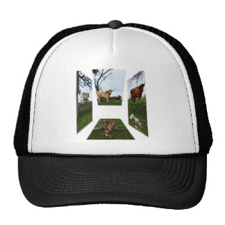 Highland Cow, Dimensional Art,  Black Truckers Cap Trucker Hat