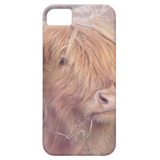 Highland Cow, Highland Cattle Case For The iPhone 5