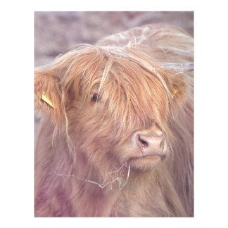 Highland Cow, Highland Cattle Letterhead Template