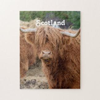 Highland Cow Jigsaw Puzzle