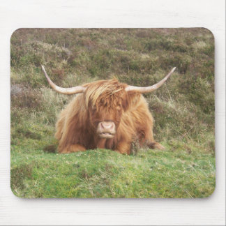 Highland cow on Dartmoor Mouse Pad