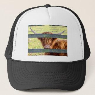 Highland cow trucker hat