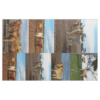 Highland Cows Photo Collage, Fabric