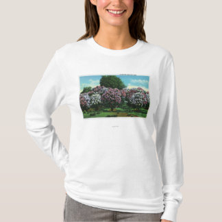 Highland Park Lilacs in Bloom T-Shirt