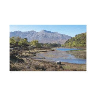Highland Spring Canvas Print