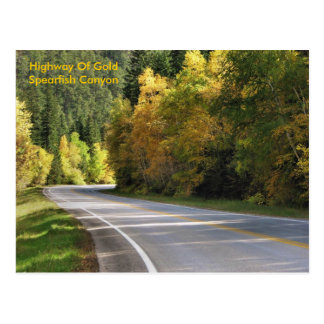 Highway Of Gold                  ... Postcard